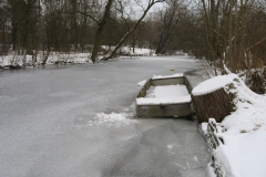 WinterSKSG 007